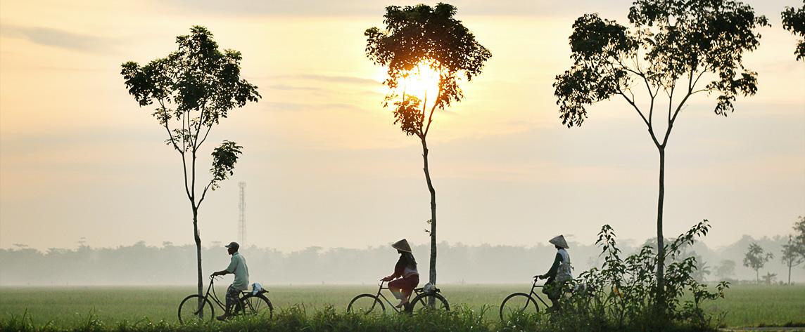 photo de présentation Indonésie