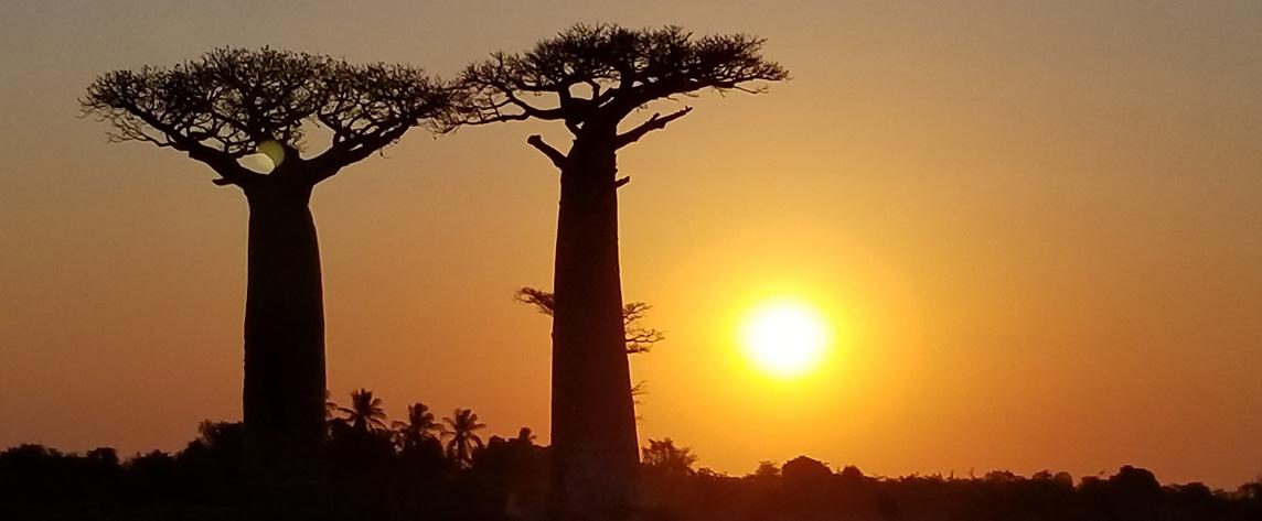 photo présentation Madagascar